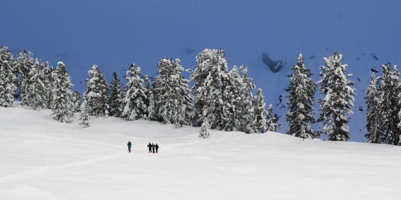 Schiwandern