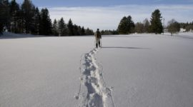 Schneeschuhwandern Schladming