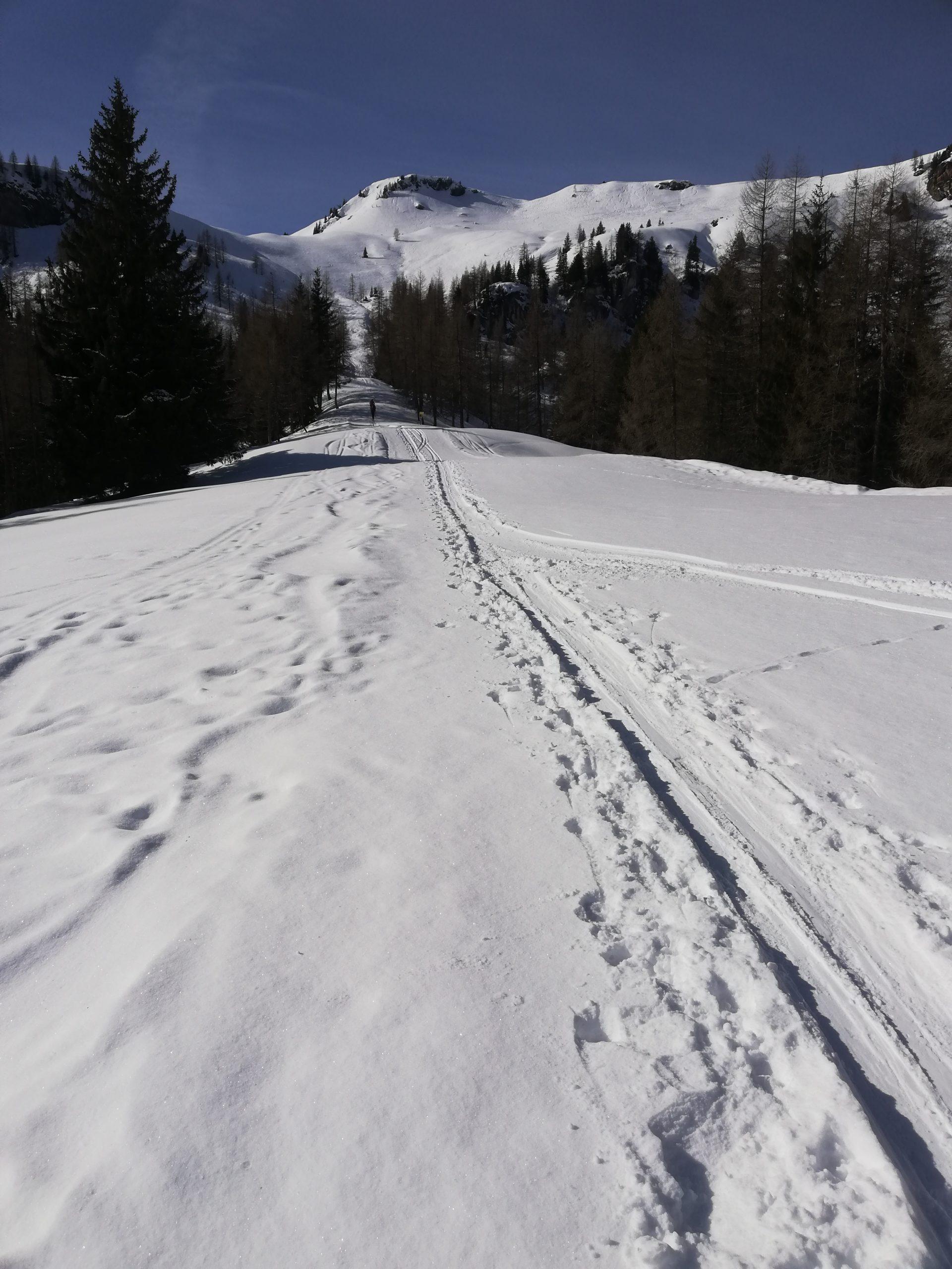 Skitourenweg auf den Plenkkopf in Kleinarl